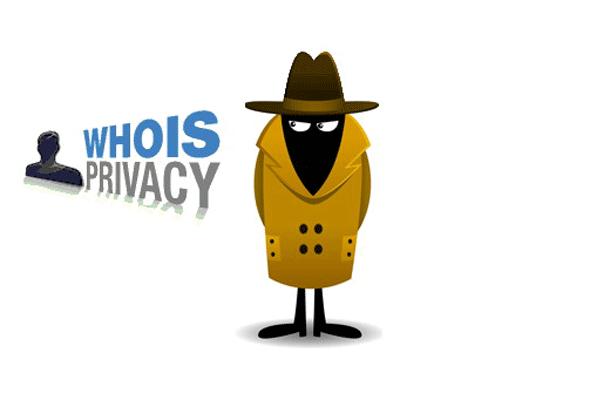 bảo mật danh tính chủ thể tên miền tại mắt bão