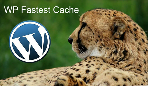 Cài đặt và kích hoạt WP Fastest Cache
