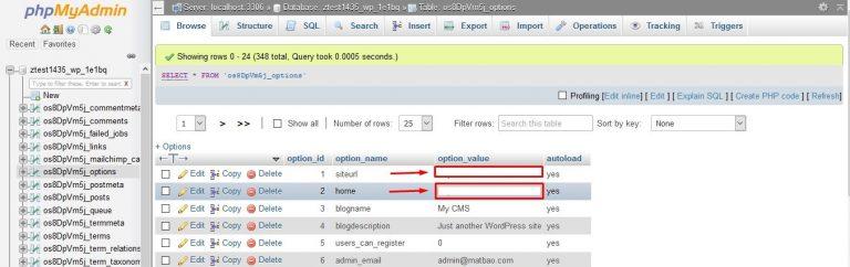 Bước 3: Danh sách bảng xuất hiện bên dưới tên của cơ sở dữ liệu. Tìm bảng có tên wp_options.